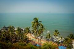 Arambol beach top view, palms, beach and Arabian sea, Goa, India.  Stock Photos