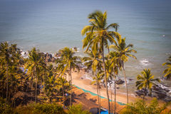 Arambol beach top view, palms, beach and Arabian sea, Goa, India.  Stock Image