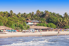 Arambol strand, Goa royaltyfri foto
