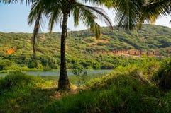 Arambol sweet lake. View of bamboo huts near the sweat lake in arambol Stock Images