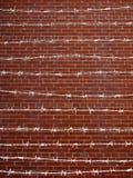 Arame farpado Imagem de Stock Royalty Free