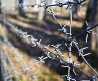 Arame farpado com fundo do campo de batalha Imagem de Stock Royalty Free