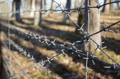 Arame farpado com fundo do campo de batalha Imagem de Stock