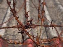 Arame farpado de Rusry Imagem de Stock
