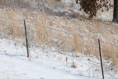 Arame farpado do inverno fotos de stock