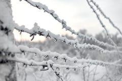 Arame farpado e neve imagem de stock