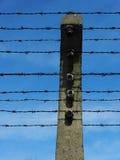 Arame farpado electrificado Imagens de Stock
