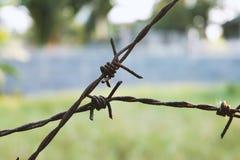 Arame farpado oxidado Foto de Stock Royalty Free