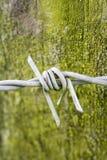 Arame farpado sobre o grunge verde Imagem de Stock