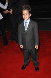Aramis. Knight at the Los Angeles premiere of Rendition at the Academy of Motion Picture Arts & Sciences Theatre, Beverly Hills. October 11, 2007  Los Angeles Royalty Free Stock Images