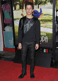 Aramis Knight. LOS ANGELES, CA - OCTOBER 23, 2013: Aramis Knight at the premiere of Jackass Presents: Bad Grandpa at the TCL Chinese Theatre, Hollywood Royalty Free Stock Image