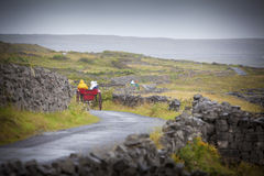 Aran Islands Horse Carts Royalty Free Stock Photos