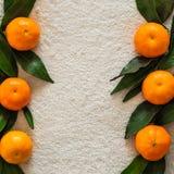 Arance dei mandarini, mandarini, clementine, agrumi con le foglie, fondo, spazio della copia fotografia stock libera da diritti