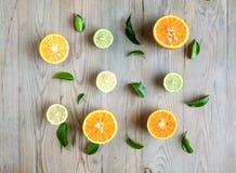 Arance e limoni Immagini Stock