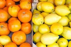 Arance e limoni su un mercato dello scrittorio fotografia stock libera da diritti