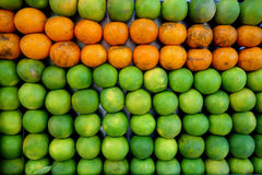 Arance e mandarini verdi Fotografia Stock