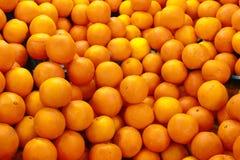 Arance fresche Fotografia Stock