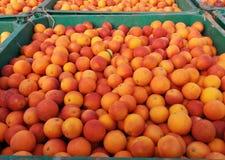 Arance fresche in cassa Fotografie Stock