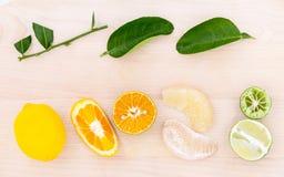 Arance miste, pomelo, limone e limetta degli agrumi su di legno Fotografia Stock Libera da Diritti