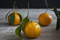 Arance organiche Fotografia Stock