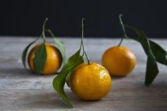 Arance organiche Fotografie Stock Libere da Diritti