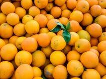 Arance organiche succose fresche sul mercato degli agricoltori Fondo arancio del primo piano fotografia stock