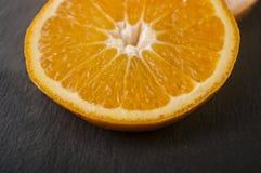 arance, pompelmo, limone su un fondo nero Immagini Stock Libere da Diritti