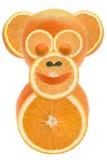 Arance & scimmia Fotografie Stock