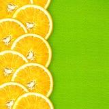 Arance succose del taglio su un fondo verde intenso Fotografia Stock Libera da Diritti