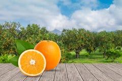 Arance sulla tavola con fondo vago dell'arancia o Fotografia Stock Libera da Diritti