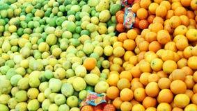 Aranci e limoni verdi Fotografie Stock