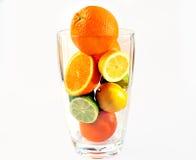 Aranci, limoni e limette in vaso. Fotografia Stock