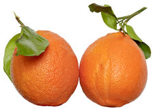 Arancia con la foglia Fotografia Stock Libera da Diritti