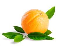 Arancia con le foglie isolate su fondo bianco Immagine Stock
