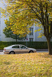 Arancia d'argento Autumn Season Outside dell'albero di caduta delle foglie della città dell'automobile Fotografie Stock Libere da Diritti