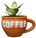 Arancia della tazza da caffè del vaso dell'albero Fotografia Stock Libera da Diritti