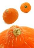 Arancia della zucca Fotografia Stock