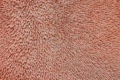 Arancia di struttura dell'anemone Immagine Stock