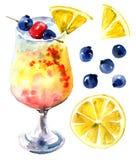Arancia e cocktail delle bacche Immagine Stock Libera da Diritti