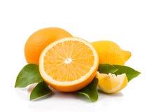 Arancia e limone Immagine Stock