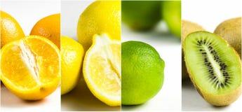 Arancia e limone del kiwi della calce del collage dell'agrume Immagine Stock Libera da Diritti