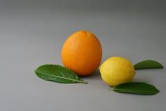 Arancia e limone organici sui precedenti grigi - Immagini Stock Libere da Diritti