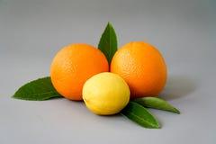 Arancia e limone organici sui precedenti grigi - Immagini Stock