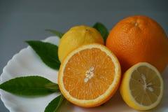 Arancia e limone organici sul piatto bianco con i precedenti grigi - Immagini Stock