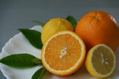 Arancia e limone organici sul piatto bianco con i precedenti grigi Immagine Stock Libera da Diritti