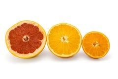 Arancia e mandarino del pompelmo su un bianco Fotografia Stock