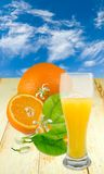 Arancia e succo sul fondo del cielo Fotografie Stock Libere da Diritti