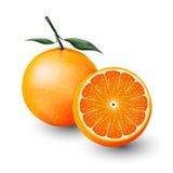 Arancia e una metà dell'arancia, frutta, trasparente, vettore Immagini Stock
