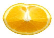 Arancia fresca Fotografia Stock