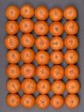 Arancia fresca, frutta del mandarino, modello del mandarino, vista superiore su un fondo nero dell'ardesia, fine su Fotografie Stock Libere da Diritti